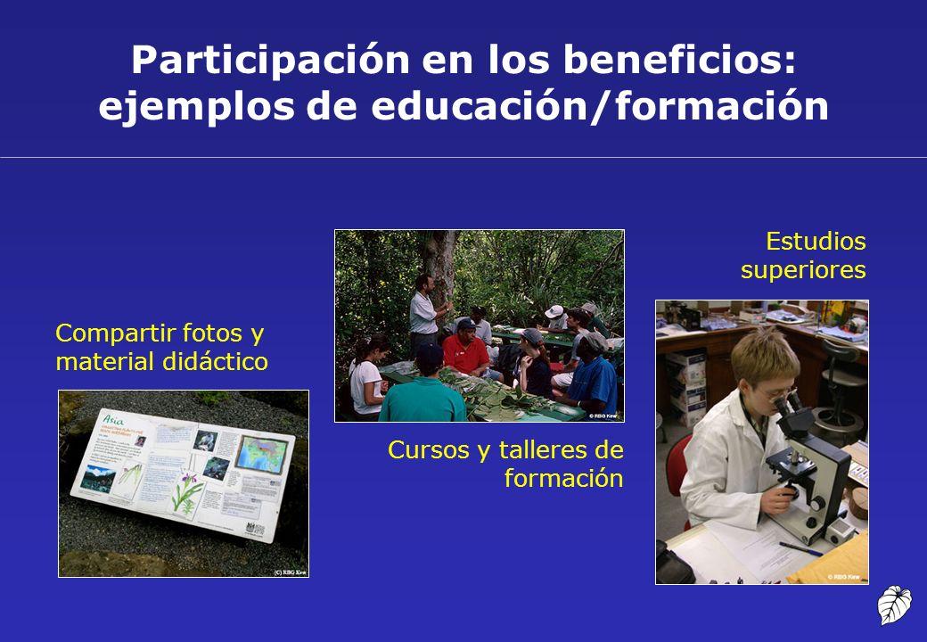Participación en los beneficios: ejemplos de educación/formación Cursos y talleres de formación Estudios superiores Compartir fotos y material didácti