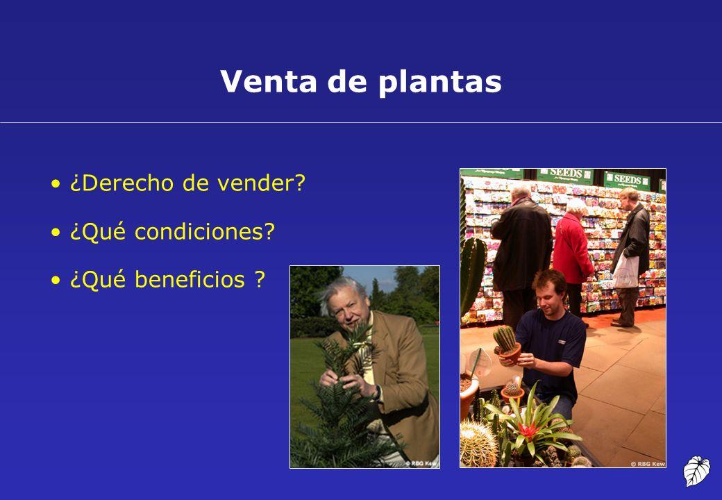 Venta de plantas ¿Derecho de vender? ¿Qué condiciones? ¿Qué beneficios ?
