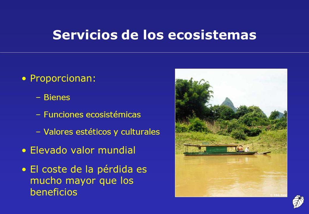 Servicios de los ecosistemas Proporcionan: –Bienes –Funciones ecosistémicas –Valores estéticos y culturales Elevado valor mundial El coste de la pérdi