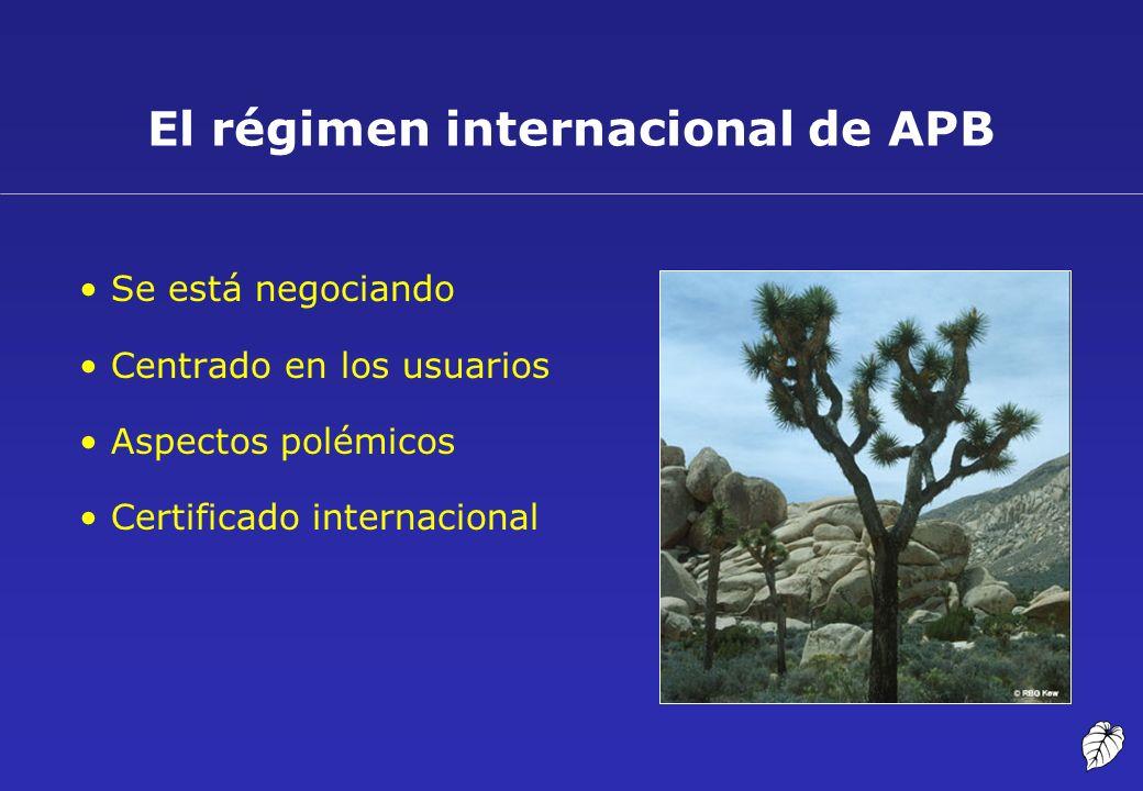 El régimen internacional de APB Se está negociando Centrado en los usuarios Aspectos polémicos Certificado internacional