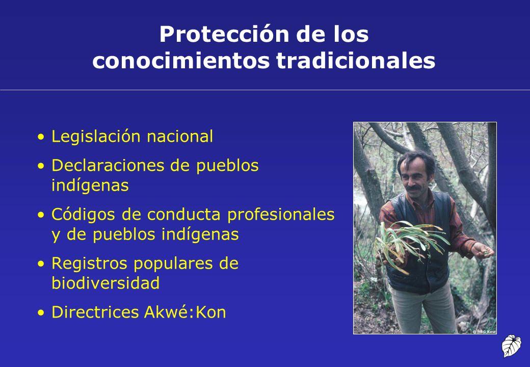 Protección de los conocimientos tradicionales Legislación nacional Declaraciones de pueblos indígenas Códigos de conducta profesionales y de pueblos i