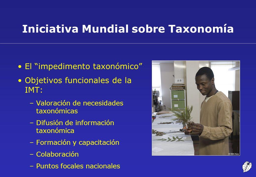 Iniciativa Mundial sobre Taxonomía El impedimento taxonómico Objetivos funcionales de la IMT: –Valoración de necesidades taxonómicas –Difusión de info