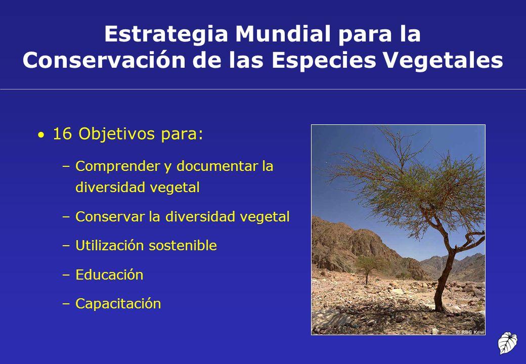 Estrategia Mundial para la Conservación de las Especies Vegetales 16 Objetivos para: –Comprender y documentar la diversidad vegetal –Conservar la dive