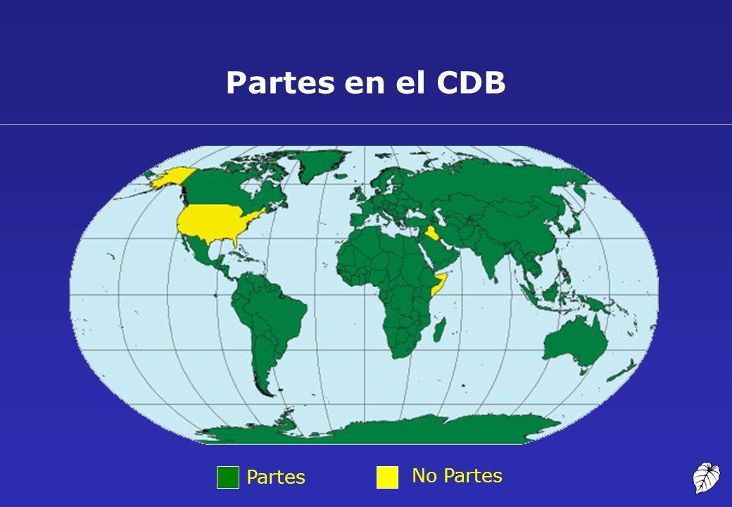 Partes No Partes Partes en el CDB