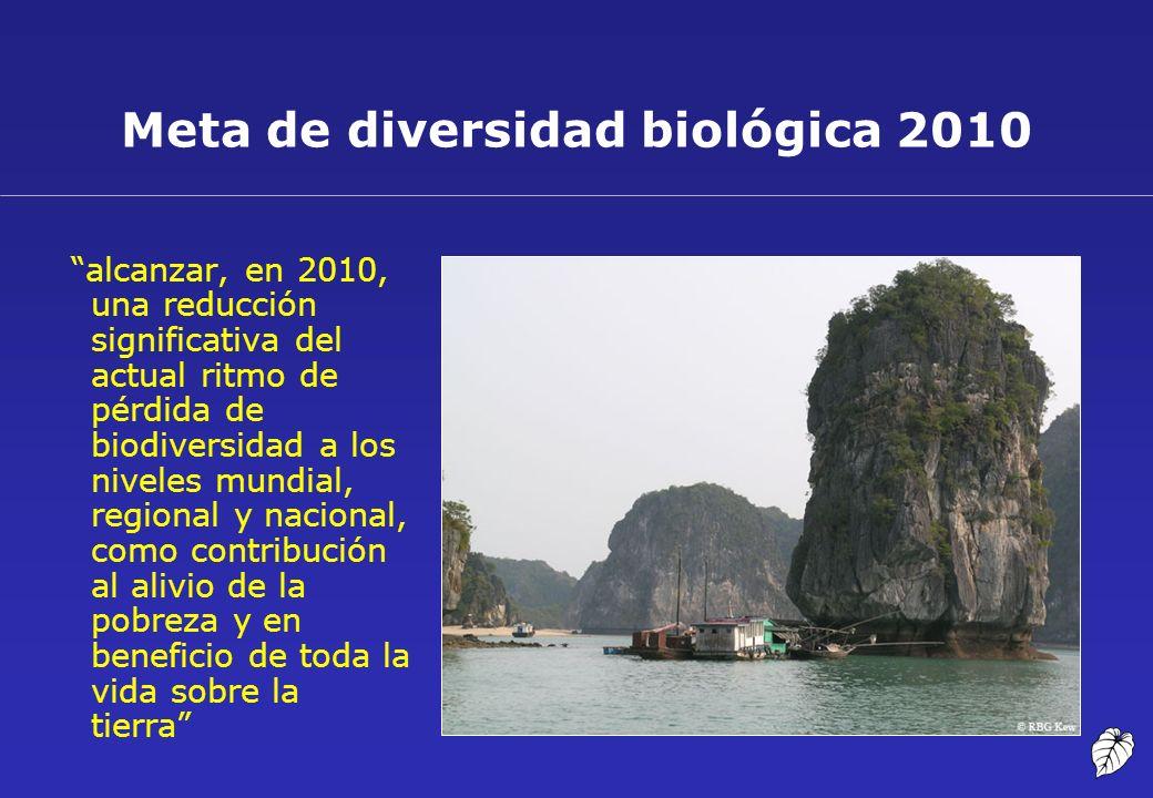 Meta de diversidad biológica 2010 alcanzar, en 2010, una reducción significativa del actual ritmo de pérdida de biodiversidad a los niveles mundial, r