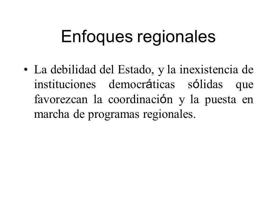 Enfoques regionales La debilidad del Estado, y la inexistencia de instituciones democr á ticas s ó lidas que favorezcan la coordinaci ó n y la puesta