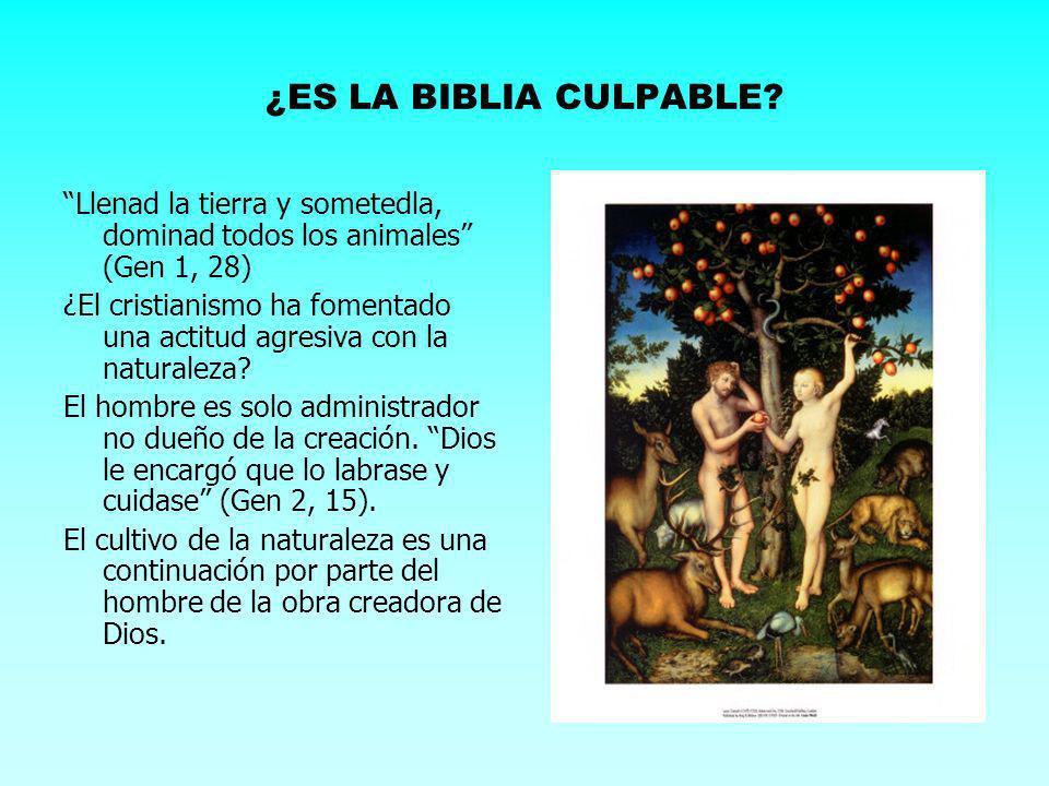 ¿ES LA BIBLIA CULPABLE? Llenad la tierra y sometedla, dominad todos los animales (Gen 1, 28) ¿El cristianismo ha fomentado una actitud agresiva con la