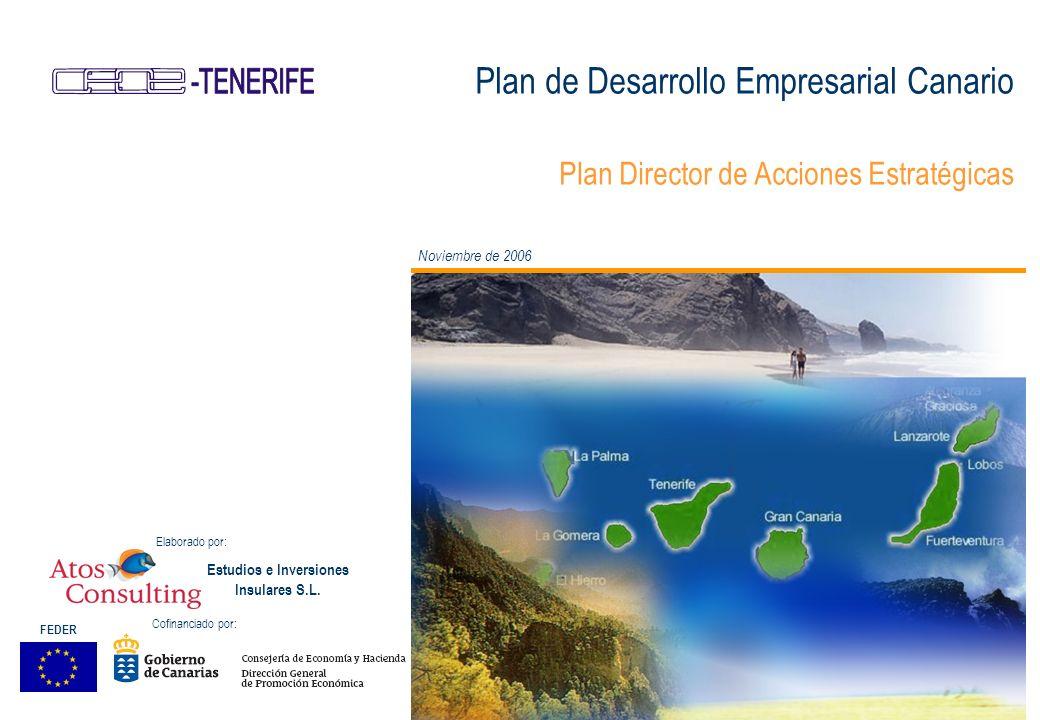Plan de Desarrollo Empresarial Canario Plan Director de Acciones Estratégicas Noviembre de 2006 Estudios e Inversiones Insulares S.L.