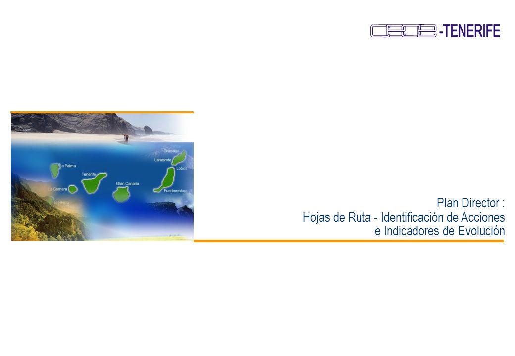 31 Plan de Desarrollo Empresarial de Canarias Plan Director Líneas Estratégicas de Actuación - Dinamización Empresarial Canarias presenta un escaso espíritu emprendedor.