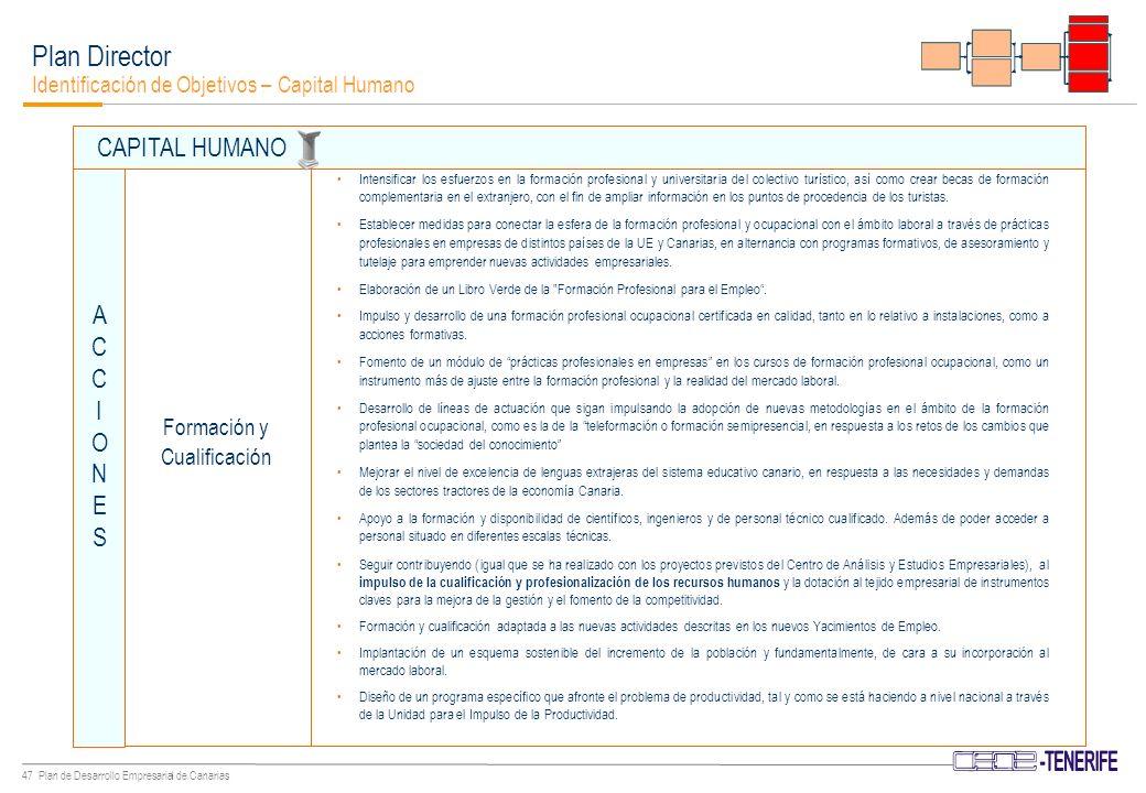46 Plan de Desarrollo Empresarial de Canarias Fomentar acuerdos de colaboración entre la Universidad y el sector empresarial.
