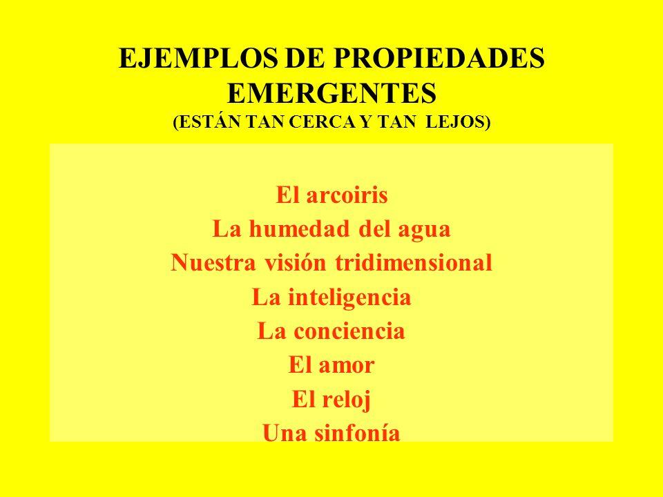 PROPIEDADES EMERGENTES Fenómenos culturales y sociales que emergen de las interacciones Fenómenos culturales y sociales que emergen de las interaccion