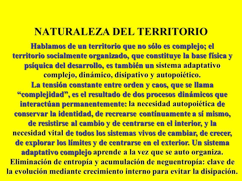 DESARROLLO TERRITORIAL ENDÓGENO RIZOS E INTERACCIONES UNA PROPIEDAD EMERGENTE DE UN SISTEMA TERRITORIAL ALTAMENTE SINERGIZADO STOCK DE CAPITALES INTAN