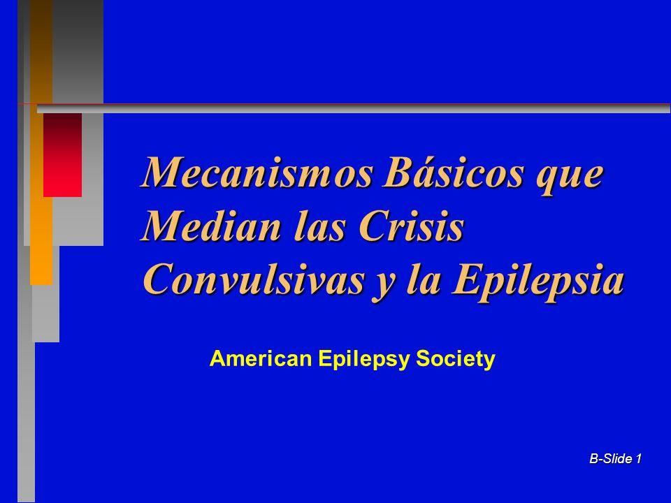 B-Slide 1 Mecanismos Básicos que Median las Crisis Convulsivas y la Epilepsia American Epilepsy Society