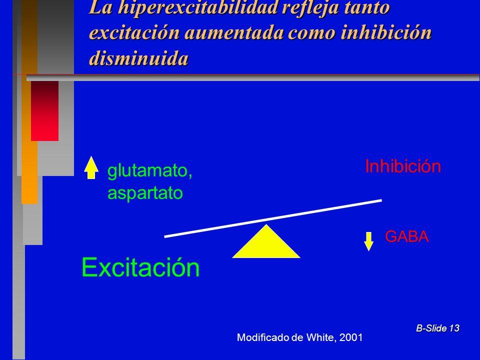 B-Slide 13 La hiperexcitabilidad refleja tanto excitación aumentada como inhibición disminuida Excitación Inhibición GABA glutamato, aspartato Modifie