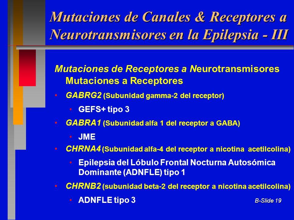 B-Slide 19 Mutaciones de Receptores a Neurotransmisores Mutaciones a Receptores GABRG2 (Subunidad gamma-2 del receptor) GEFS+ tipo 3 GABRA1 (Subunidad