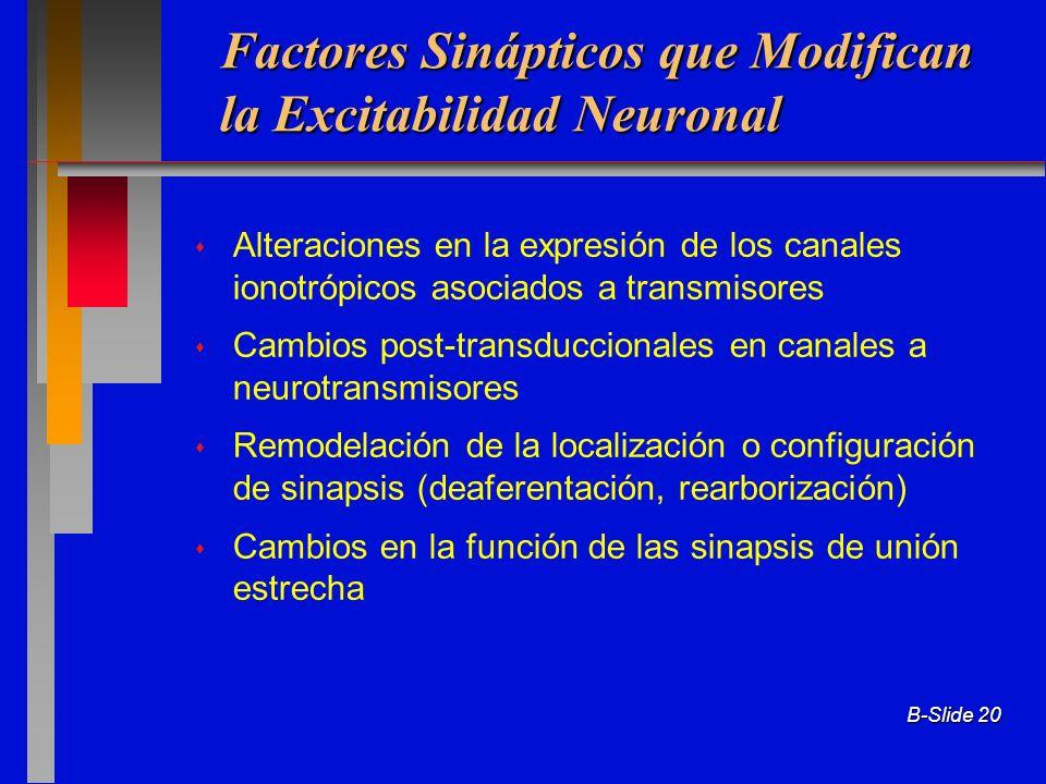 B-Slide 20 Factores Sinápticos que Modifican la Excitabilidad Neuronal Alteraciones en la expresión de los canales ionotrópicos asociados a transmisor