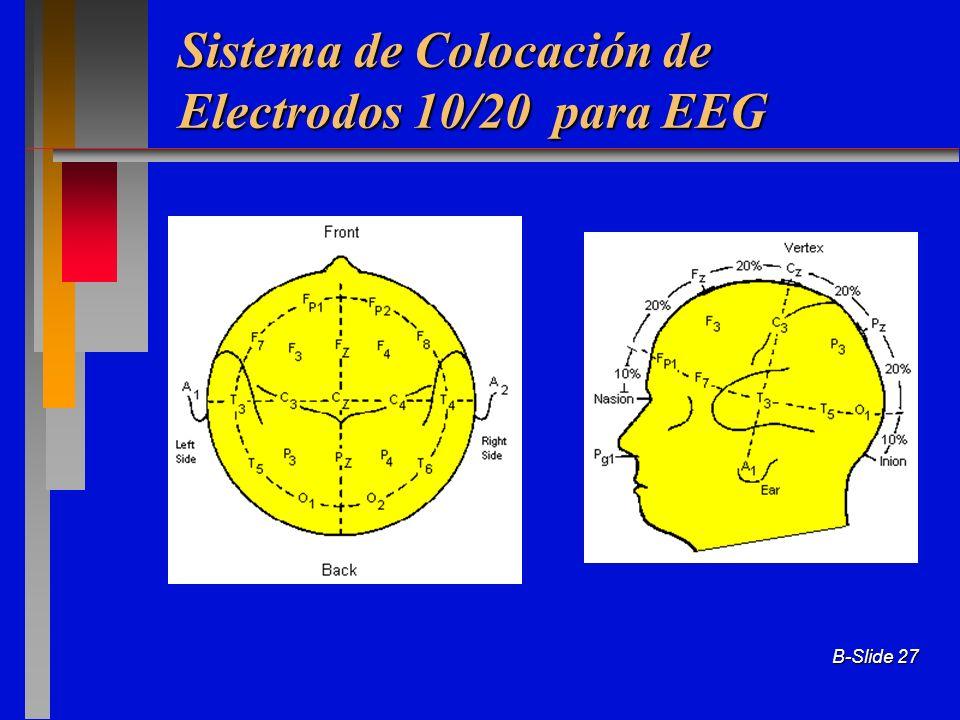 B-Slide 27 Sistema de Colocación de Electrodos 10/20 para EEG