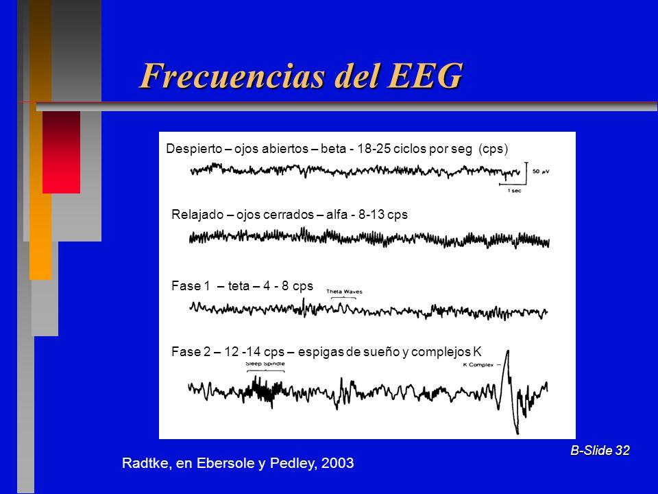 B-Slide 32 Frecuencias del EEG Radtke, en Ebersole y Pedley, 2003 Despierto – ojos abiertos – beta - 18-25 ciclos por seg (cps) Relajado – ojos cerrad