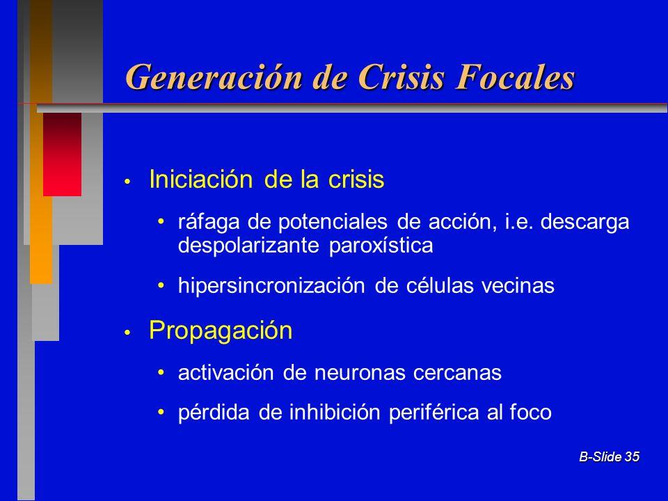 B-Slide 35 Generación de Crisis Focales Iniciación de la crisis ráfaga de potenciales de acción, i.e. descarga despolarizante paroxística hipersincron
