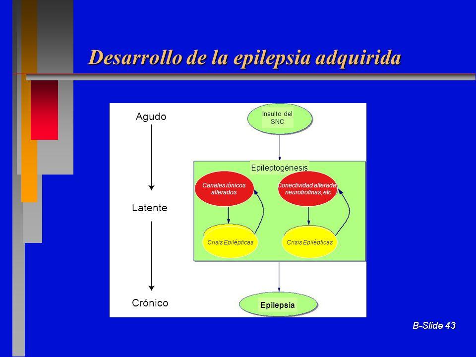 Desarrollo de la epilepsia adquirida B-Slide 43 Agudo Latente Crónico Insulto del SNC Epilepsia Canales iónicos alterados Crisis Epilépticas Epileptog
