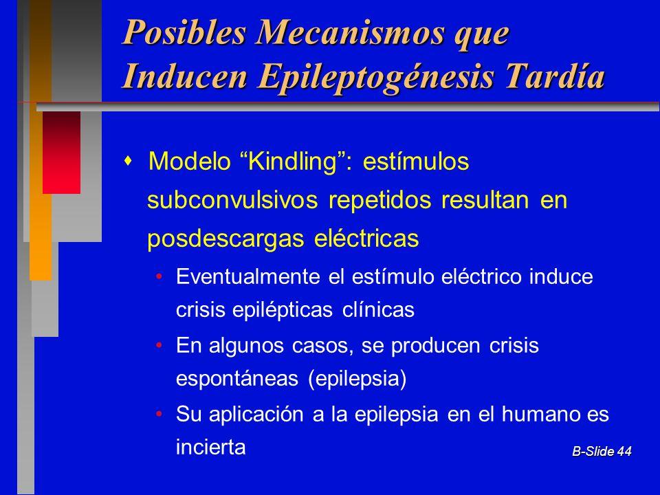B-Slide 44 Posibles Mecanismos que Inducen Epileptogénesis Tardía Modelo Kindling: estímulos subconvulsivos repetidos resultan en posdescargas eléctri