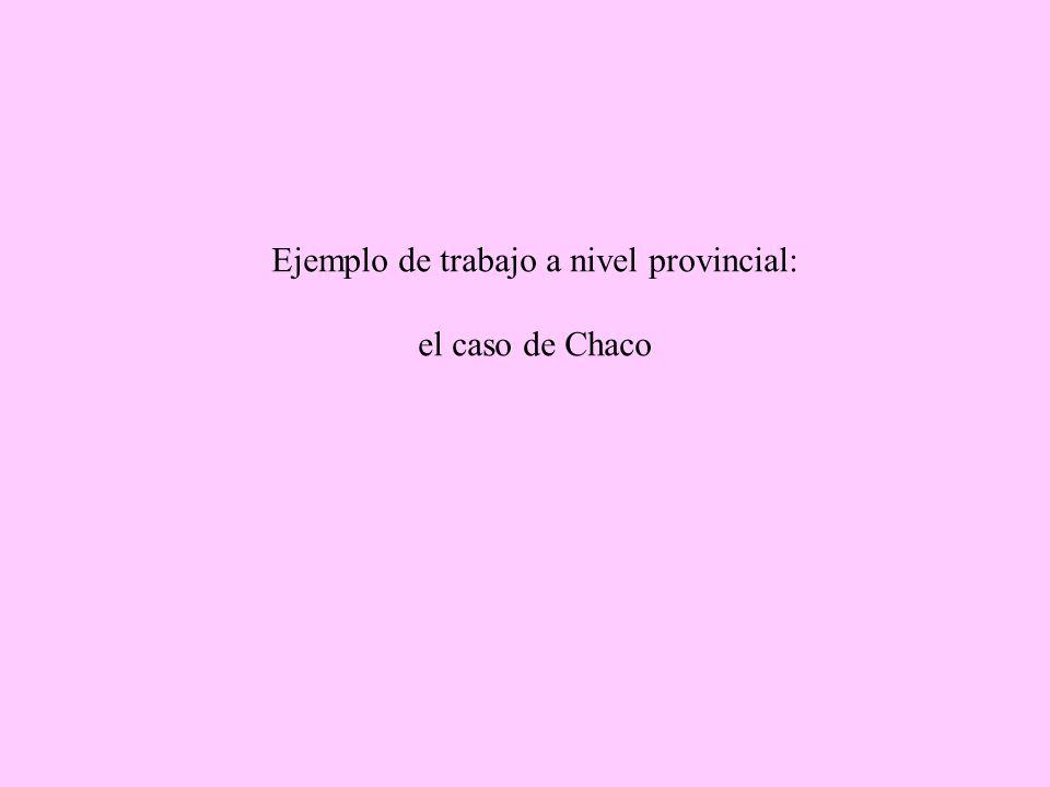 Ejemplo de trabajo a nivel provincial: el caso de Chaco