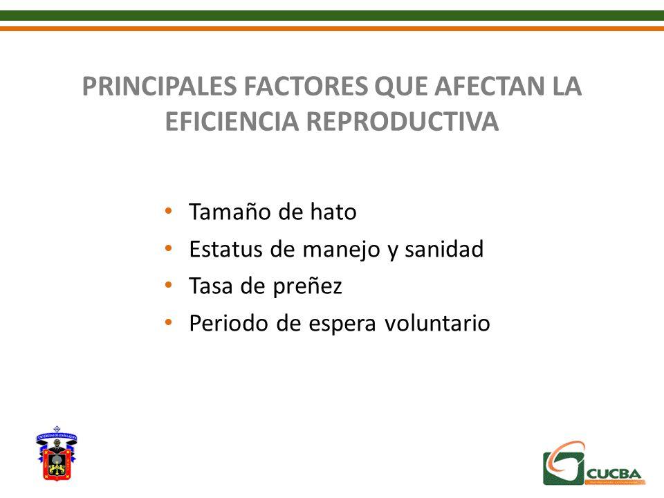 PRINCIPALES FACTORES QUE AFECTAN LA EFICIENCIA REPRODUCTIVA Tamaño de hato Estatus de manejo y sanidad Tasa de preñez Periodo de espera voluntario
