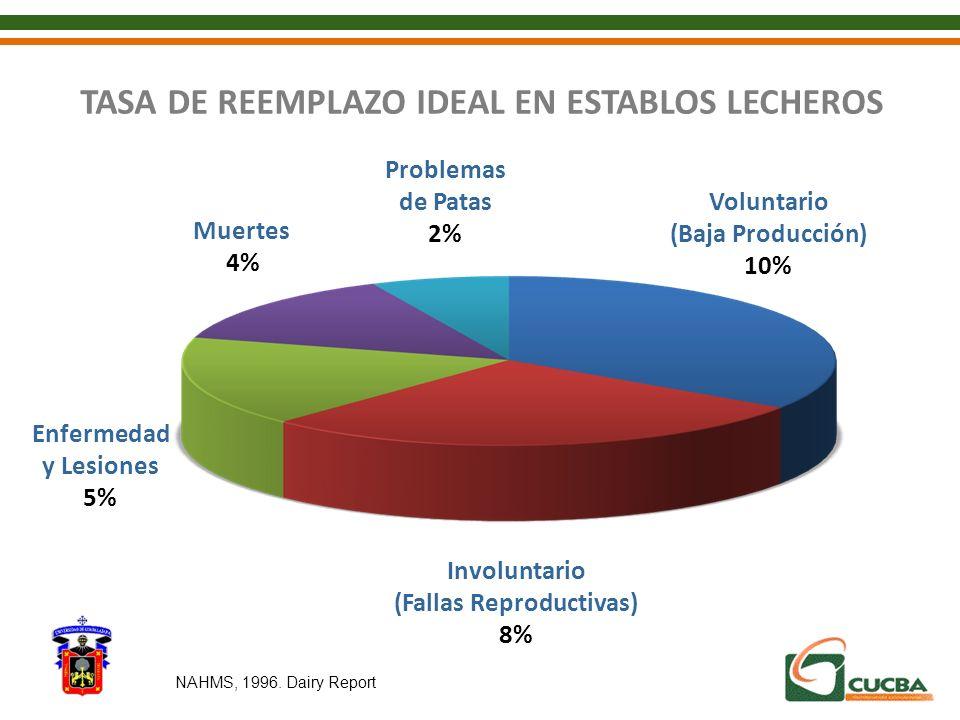 TASA DE REEMPLAZO IDEAL EN ESTABLOS LECHEROS Involuntario (Fallas Reproductivas) 8% Voluntario (Baja Producción) 10% Problemas de Patas 2% Muertes 4%