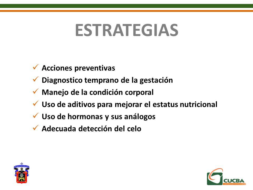 ESTRATEGIAS Acciones preventivas Diagnostico temprano de la gestación Manejo de la condición corporal Uso de aditivos para mejorar el estatus nutricio