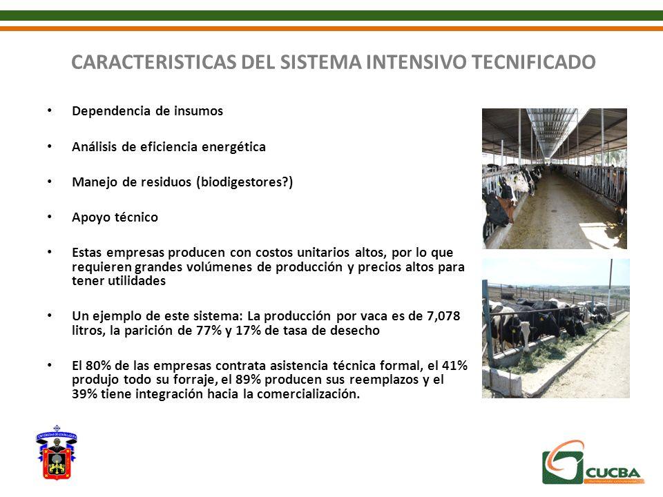 CARACTERISTICAS DEL SISTEMA INTENSIVO TECNIFICADO Dependencia de insumos Análisis de eficiencia energética Manejo de residuos (biodigestores?) Apoyo t