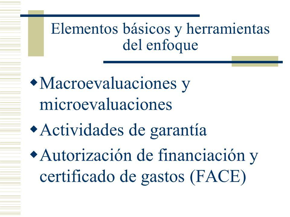 Elementos básicos y herramientas del enfoque Macroevaluaciones y microevaluaciones Actividades de garantía Autorización de financiación y certificado