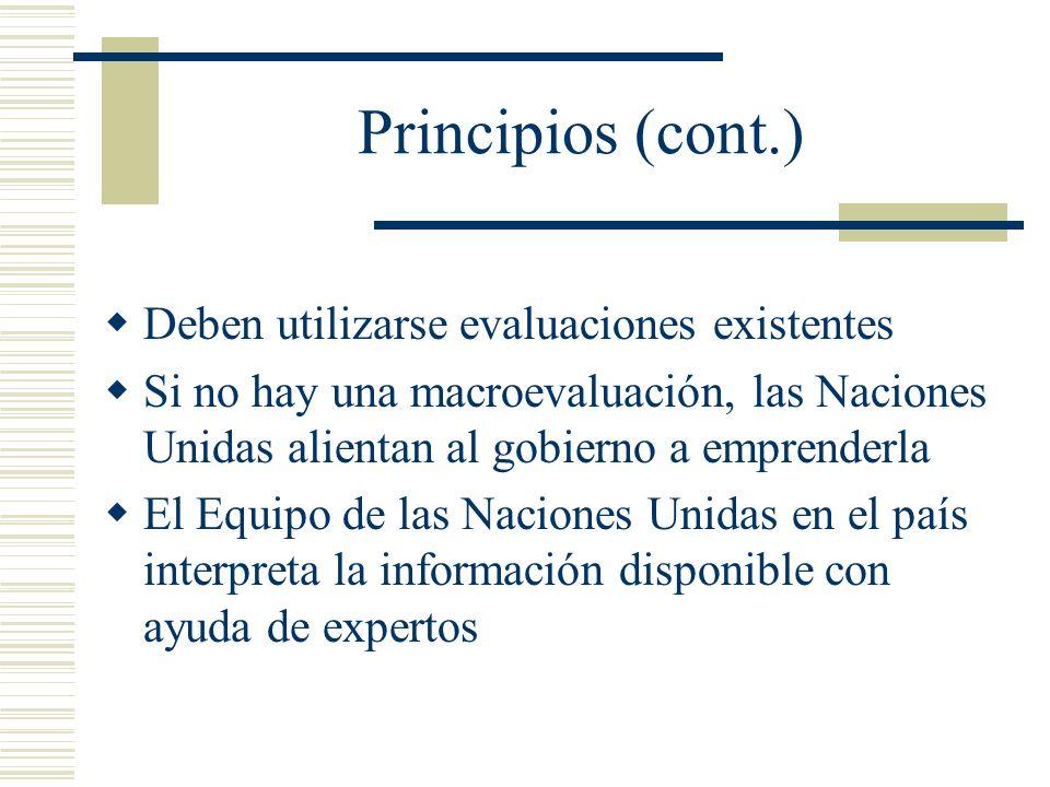 Principios (cont.) Deben utilizarse evaluaciones existentes Si no hay una macroevaluación, las Naciones Unidas alientan al gobierno a emprenderla El E