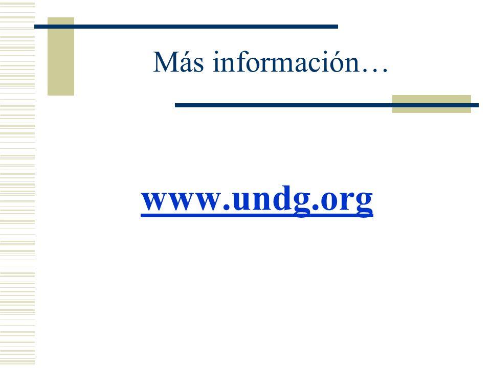 Más información… www.undg.org