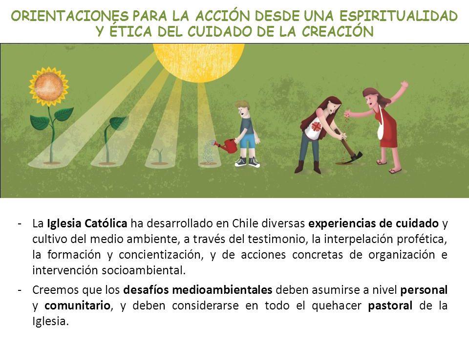ORIENTACIONES PARA LA ACCIÓN DESDE UNA ESPIRITUALIDAD Y ÉTICA DEL CUIDADO DE LA CREACIÓN -La Iglesia Católica ha desarrollado en Chile diversas experi