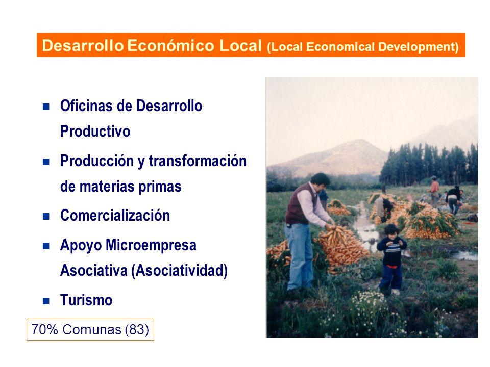 n Oficinas de Desarrollo Productivo n Producción y transformación de materias primas n Comercialización n Apoyo Microempresa Asociativa (Asociatividad