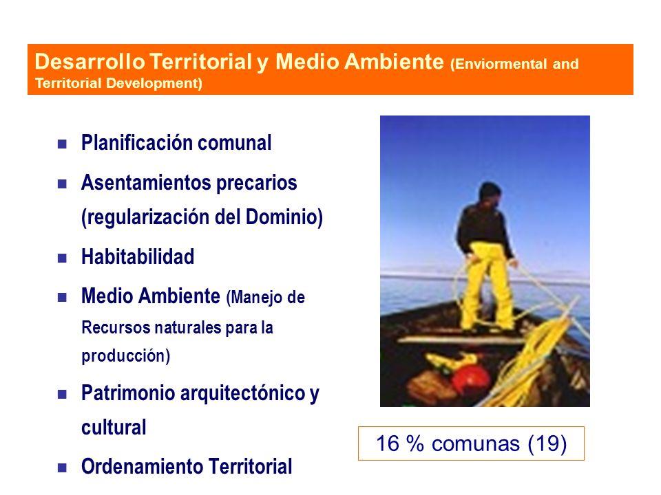 n Planificación comunal n Asentamientos precarios (regularización del Dominio) n Habitabilidad n Medio Ambiente (Manejo de Recursos naturales para la