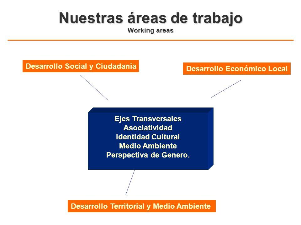 Nuestras áreas de trabajo Working areas Desarrollo Social y Ciudadanía Desarrollo Económico Local Desarrollo Territorial y Medio Ambiente Ejes Transve