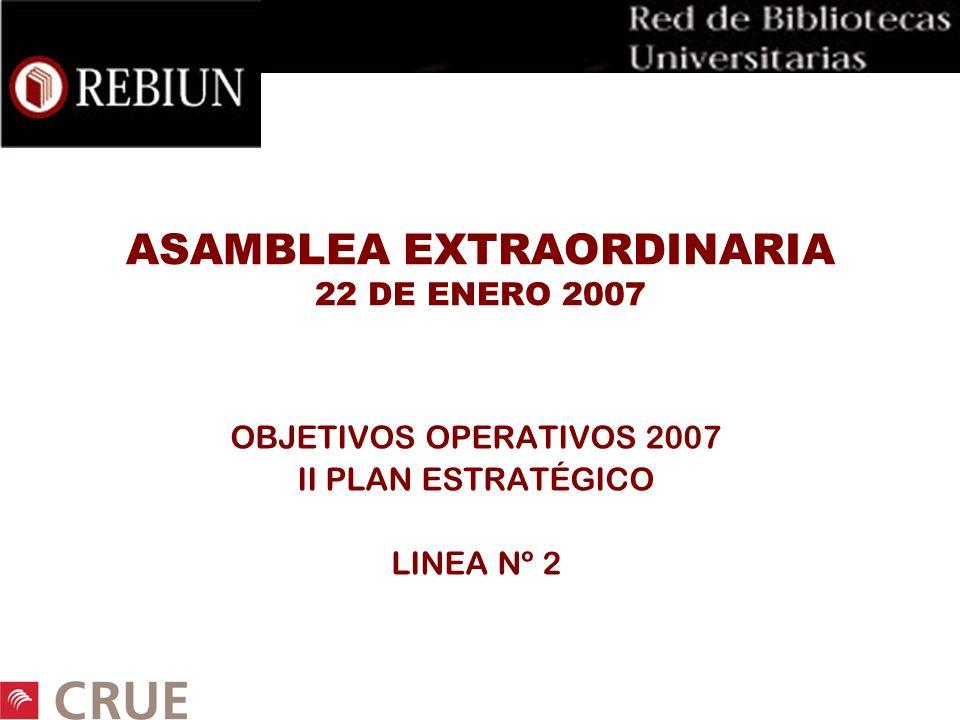 ASAMBLEA EXTRAORDINARIA 22 DE ENERO 2007 OBJETIVOS OPERATIVOS 2007 II PLAN ESTRATÉGICO LINEA Nº 2