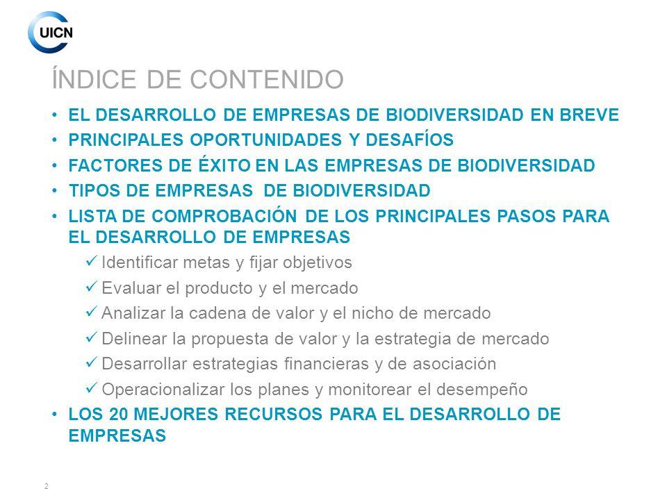 13 LOS FACTORES CRÍTICOS DEL ÉXITO (Adaptado de IISD, 2008) 1.Liderazgo: El compromiso y continuidad del liderazgo y coordinación de la empresa.