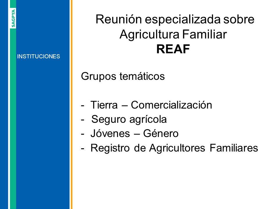 Grupos temáticos - Tierra – Comercialización -Seguro agrícola - Jóvenes – Género - Registro de Agricultores Familiares INSTITUCIONES Reunión especiali