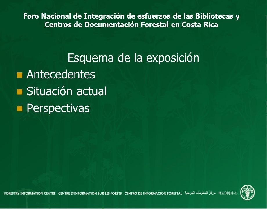Foro Nacional de Integración de esfuerzos de las Bibliotecas y Centros de Documentación Forestal en Costa Rica Esquema de la exposición Antecedentes S