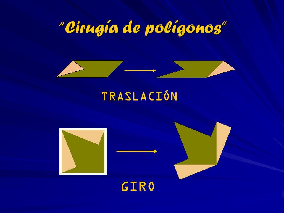 Cirugía de polígonos TRASLACIÓN GIRO