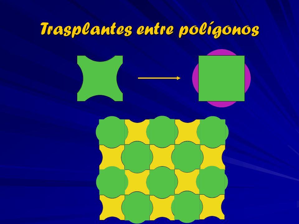 Trasplantes entre polígonos