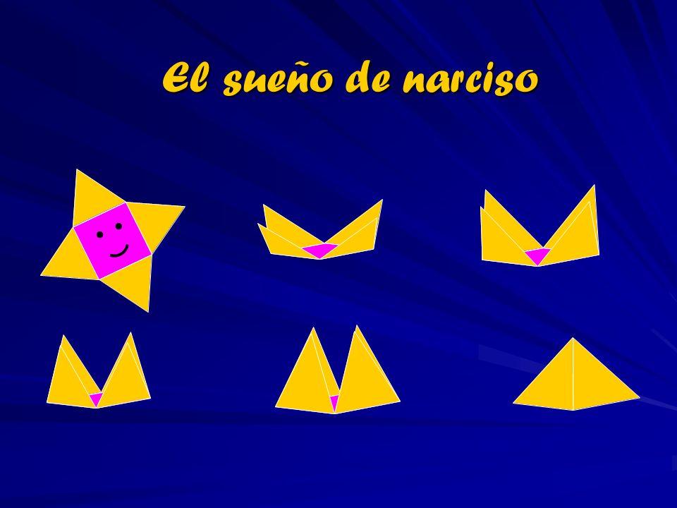 El sueño de narciso