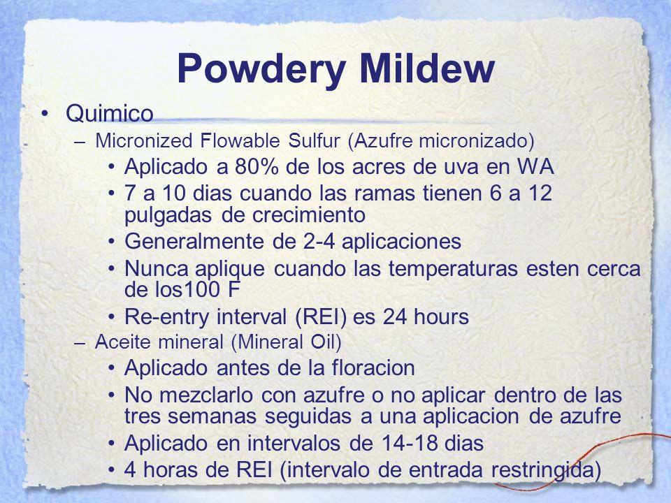 Powdery Mildew Quimico –Micronized Flowable Sulfur (Azufre micronizado) Aplicado a 80% de los acres de uva en WA 7 a 10 dias cuando las ramas tienen 6