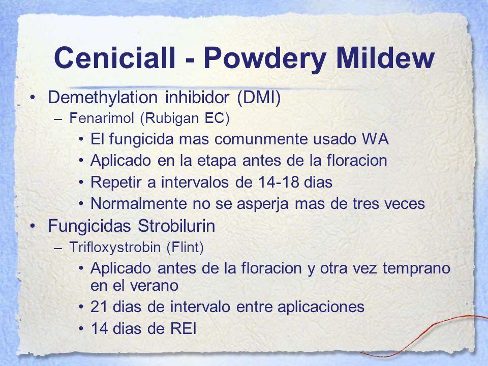 Ceniciall - Powdery Mildew Demethylation inhibidor (DMI) –Fenarimol (Rubigan EC) El fungicida mas comunmente usado WA Aplicado en la etapa antes de la