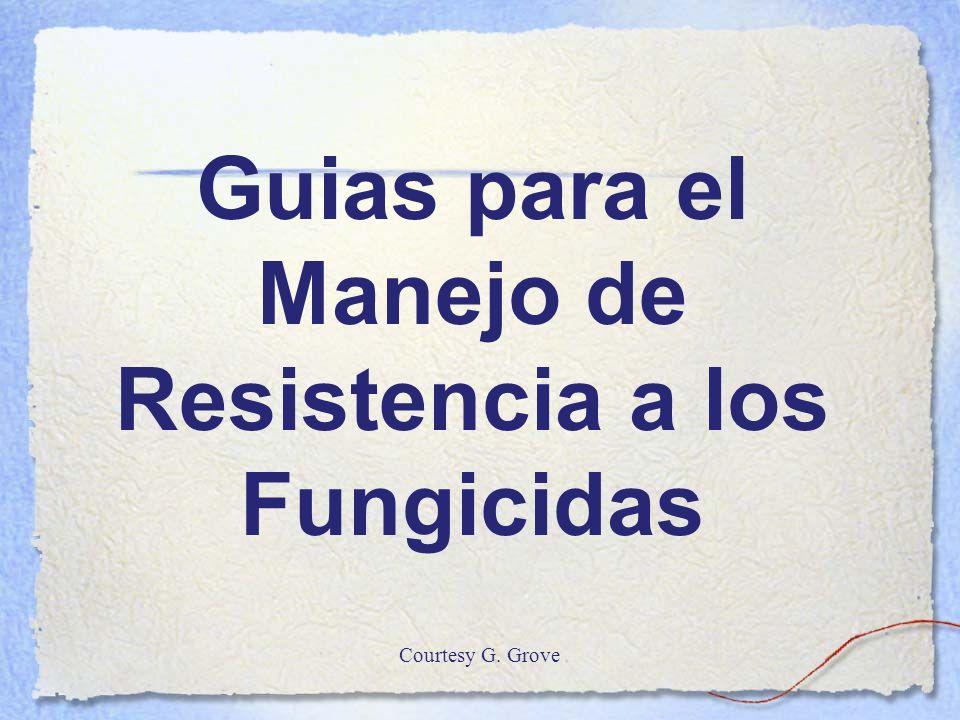 Guias para el Manejo de Resistencia a los Fungicidas Courtesy G. Grove