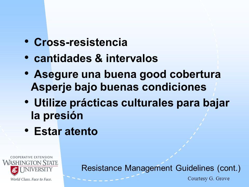 Cross-resistencia cantidades & intervalos Asegure una buena good cobertura Asperje bajo buenas condiciones Utilize prácticas culturales para bajar la