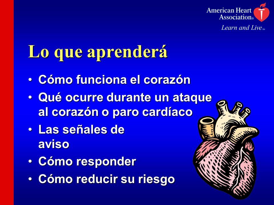Lo que aprenderá Cómo funciona el corazónCómo funciona el corazón Qué ocurre durante un ataque al corazón o paro cardíacoQué ocurre durante un ataque