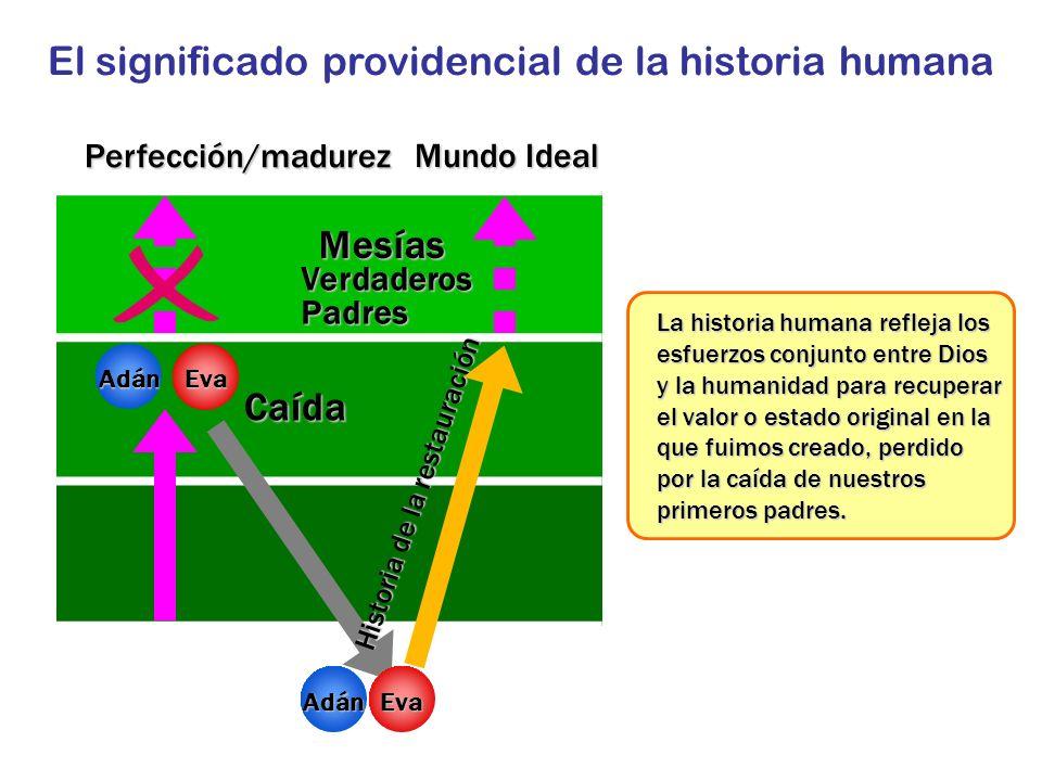 Perfección/madurez Caída Historia de la restauración Mesías Verdaderos Padres Mundo Ideal AdánEva El significado providencial de la historia humana Ad